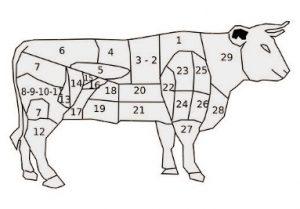 Parties du boeuf bio de la Ferme Bichet, viande de boeuf charolais bio à la ferme traditionnelle, domaine et prairies naturelles, livraison fraîcheur. Charcuterie, Fromagerie et Epicerie.